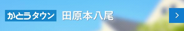 田原本八尾