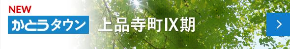 上品寺IX